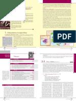 pdf_2667