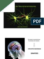 11-04 Sistemas de Neurotransmissores