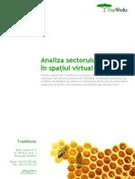 Analiza Sectorului Financiar in Spatiul Virtual