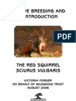 Red Squirrel Captive Breeding