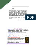 fabioaulas18e19-iluminismo