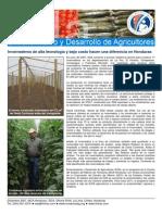 07_12_EDA_SS_Greenhouses_ESP