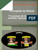 aula sobre percepção de risco 2