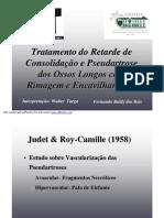 Tratamento do Retardo de Consolidação e Pseudartrose com Rimagem e Encavilhamento. Fernando Baldy dos Reis, Walter Targa