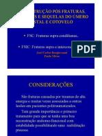 RECONSTRUÇÃO PÓS FRATURAS LUXAÇÕES DO ÚMERO DISTAL, COTOVELO E SUAS SEQUELAS  José Carlos Bongiovanni, Paulo Miras