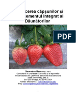 Manual Strawberry Production and IPM for Moldova Romanian 26MAY11