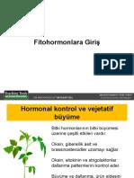 gelişim genetiği 23.05.2011 (bitki hormonlarının özet versiyonu)