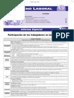 Participación de los trabajadores - Informe Especial y Casos Prácticos - Febrero 2007