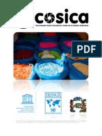 COSICA Briefing