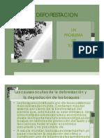 PRESENTACION deforestacion