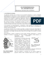 anatomofisiologia1-091015182548-phpapp02