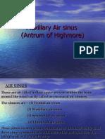 Maxillary Air Sinus