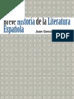 Breve historia de la literatura española - Juan González Martínez
