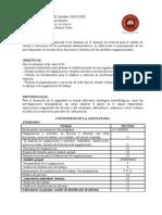 Programa- Sistemas Organizacionales SECCION a-UNIVERSIDAD