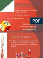 AMINOÁCIDOS RAROS