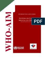 Informe sobre la salud pública en Chile año 2006