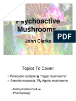 Psychoactive Mushrooms Presentation