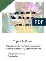 Erowid psilocybin mushroom vault: safe-pik guide: poisonous #10.