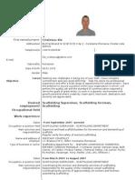 CV Engleza Cristescu Ilie