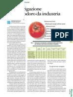 Fertirrigazione Pomodoro Da Industria