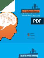 Guía psicoeducación familias personas diagnosticadas psic