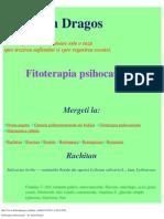 Fitoterapia psihocauzala – dr. Dorin Dragos