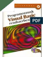 Programozzunk Visual Basic Rendszerben