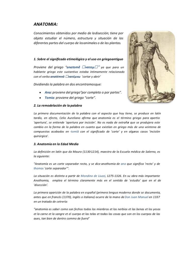 Asombroso Anatomía Que Significa En Inglés Cresta - Anatomía y ...
