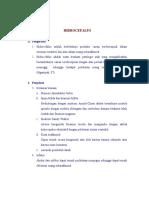 askep-hidrosephalus3