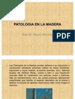 Patologia en La Madera