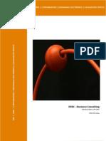Apresentação DSBC - Business consulting