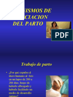 1-teoriaswparto-100727221159-phpapp01