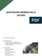 Adaptacion Cronica en La Altura