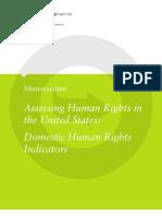 Domestic Human Rights Indicators v4