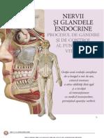 Site Atlas Anatomie