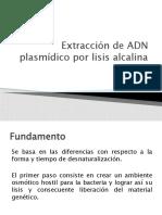 Extracción de ADN plasmídico por lisis alcalina