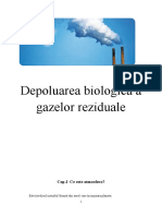 Depoluarea Biologica a Gazelor Reziduale