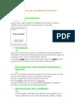Estrutura de um relatório Científico