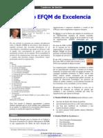 EFQM_2010