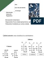 Carbohidratos complejos -2010