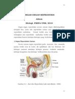 Organ Reproduksi (adnan, UNM)