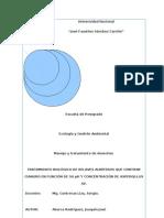 TRATAMIENTO BIOLÓGICO DE RELAVES AURÍFEROS QUE CONTIENE CIANURO EN FUNCIÓN DE SU pH Y CONCENTRACIÓN DE ASPERGILLUS SP.