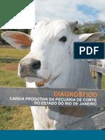 DIAGNÓSTICO DA CADEIA PRODUTIVA DA PECUÁRIA DE CORTE