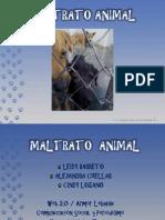 Maltrato Animal (Caninos)