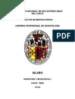 Silabo Cirugia Bucal 2010-II