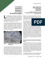 Cria nematodos entomopatogenos-7
