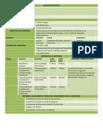 Plan de Auditoria Gestion Distribucion