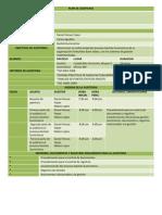 Plan de Auditoria Gestion Suministros