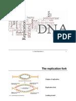 11 DNA Replication II Class