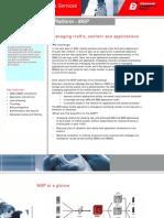MSP Brochure